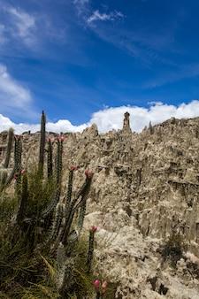 ボリビアのヴァッレデラルナ