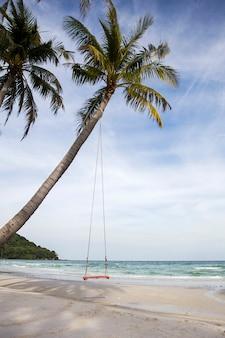 熱帯のビーチでスイング