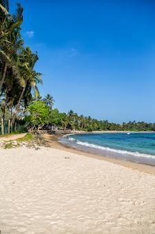 スリランカのミリッサビーチ