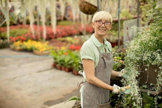 フラワーガーデンで働く年配の女性