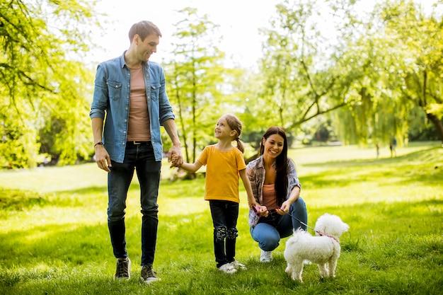 美しい幸せな家族が屋外でマルチーズ犬を楽しんでいます。