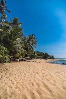 Пляж в матара, шри-ланка
