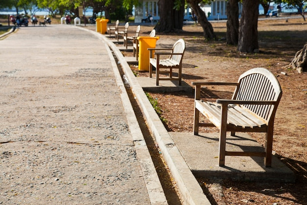 道に沿ってベンチ。