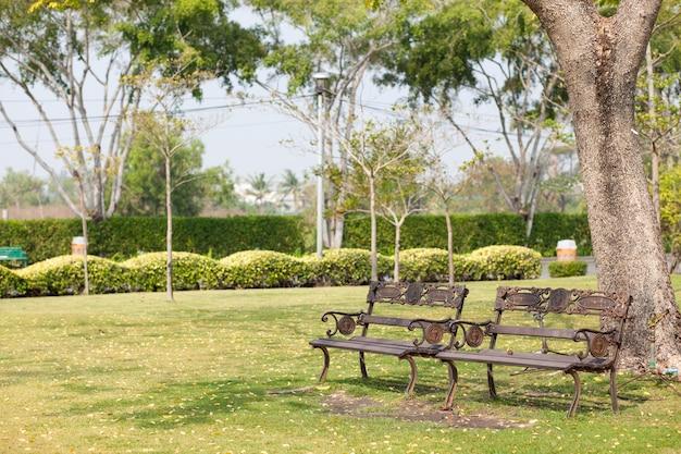 Скамейки на лужайке