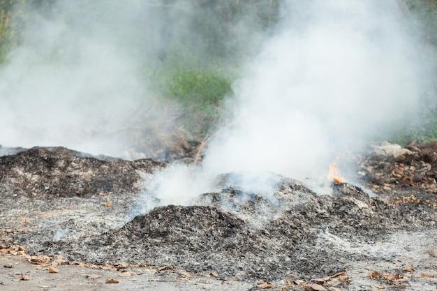 廃棄物の汚染を燃やす