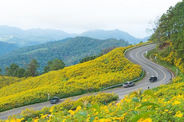 通りと黄色い花の道端。