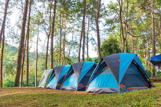 草の上のキャンプテント