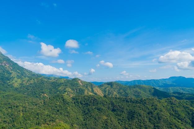 森と山の風景。