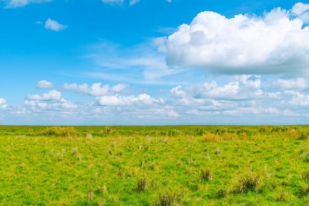 草原とクラウド。