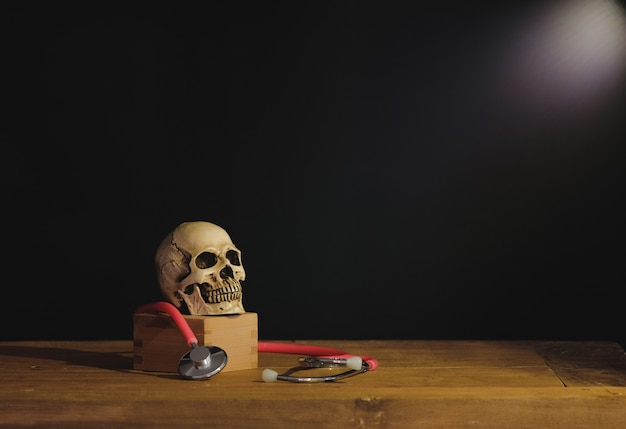 Фотография картины натюрморта с человеческим черепом на учебнике.