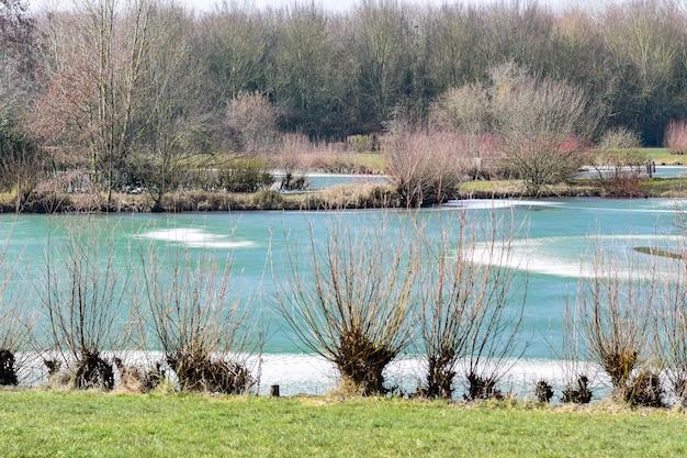 冬の凍った池の眺め