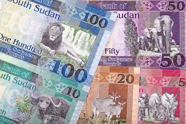 南スーダンポンド、ビジネスの背景