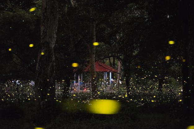 タイの夜の森で飛ぶホタルの魔法のイメージ