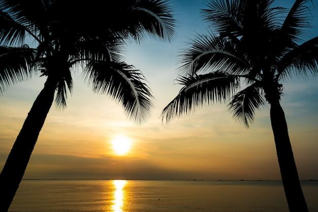 夏のコンセプトの夕日のシルエットのヤシの木。