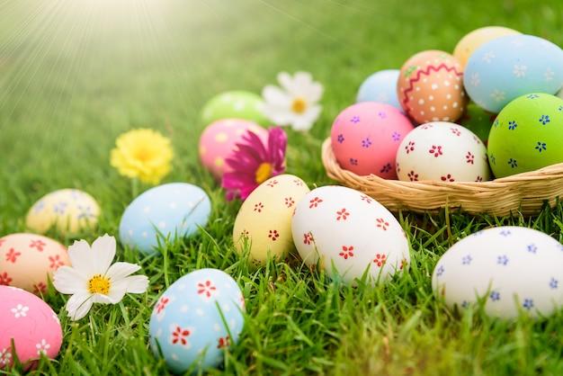 С пасхой! красочные пасхальные яйца в гнезде на поле зеленой травы во время заката