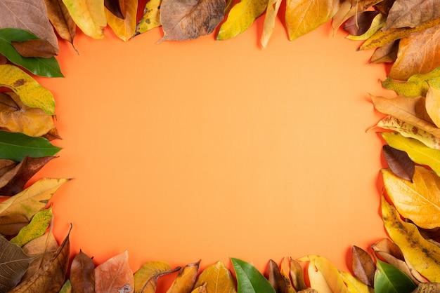 秋の組成物。オレンジ色の背景に落ちた黄色の葉のフレーム