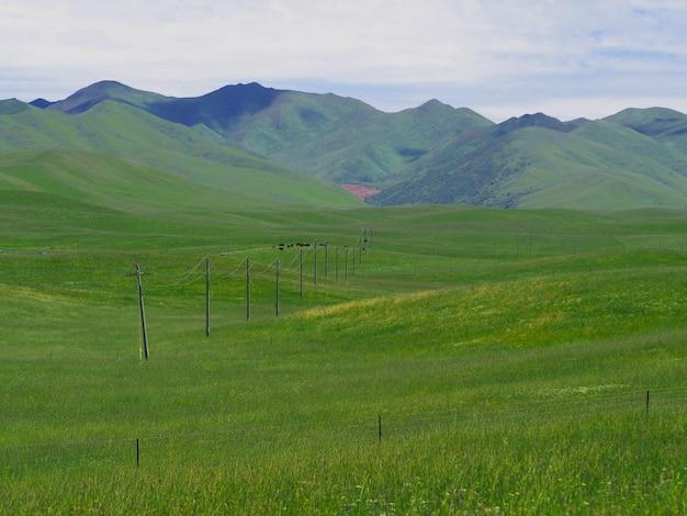 風光明媚な風景、草原、山、美しい空