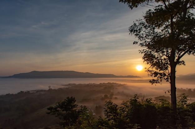 霧と太陽山の後の朝。