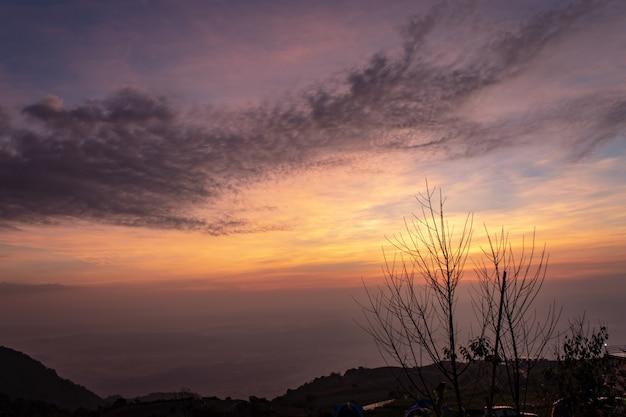 山の木々と朝の太陽。