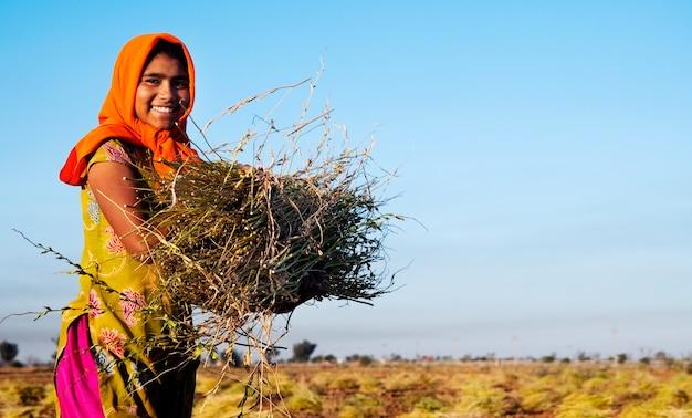 インドのジャイプール近郊の農場で働くインドの女の子
