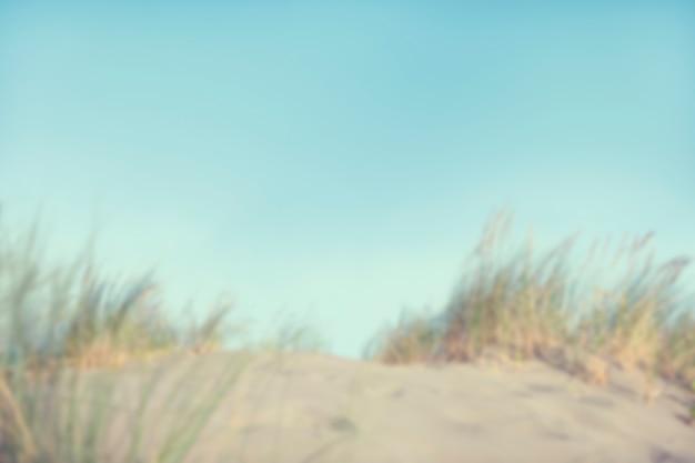 デフォーカスした砂丘と草