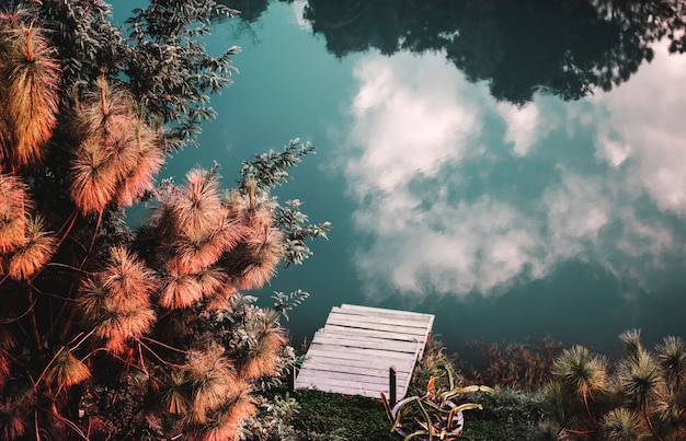 川の表面の曇りの反射