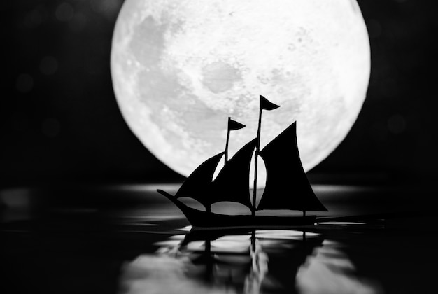 Полная луна в темную ночь