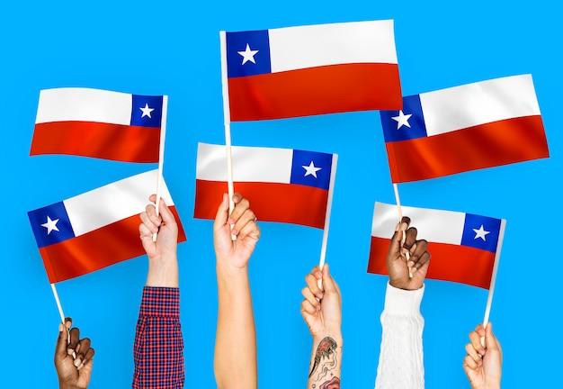 チリの手を振る手