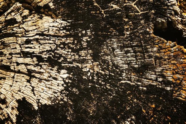 古い割れた木の切り株木材のテクスチャ