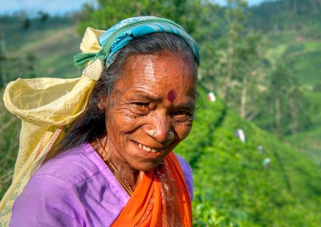 スリランカのプランテーションでの茶採取