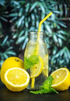 レモンミントは水のレシピを注入