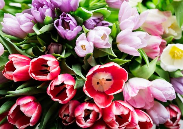 ビーの新鮮な花束