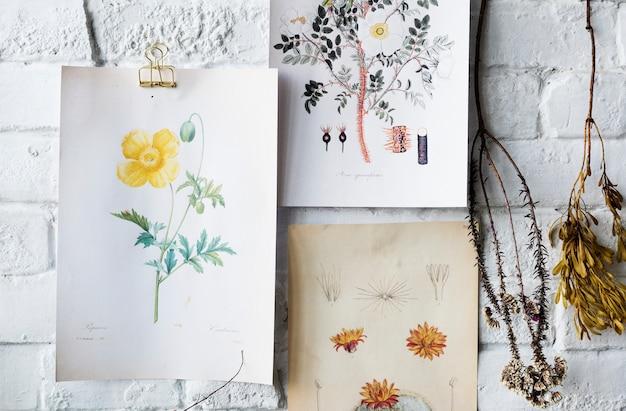 写真は、フレームに花のコレクションを描く手を行く