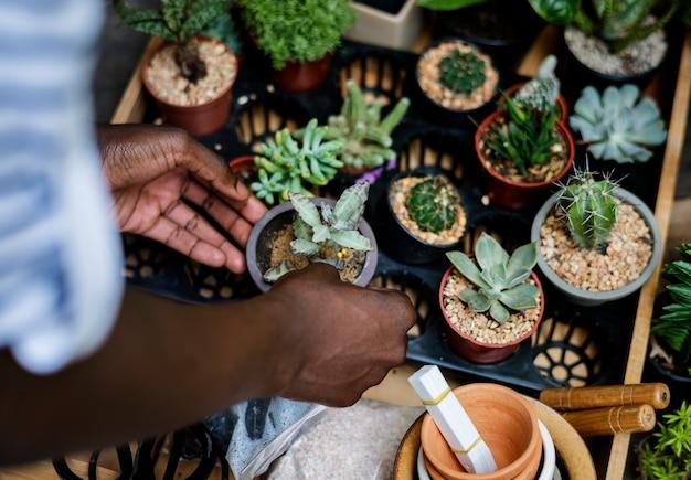 フローメショップ外の植物をチェックしている大人の男