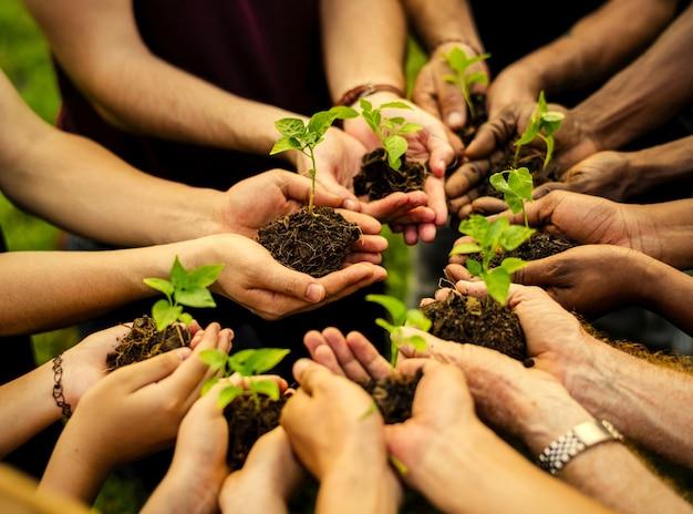 新しい木を植えるボランティアのグループ