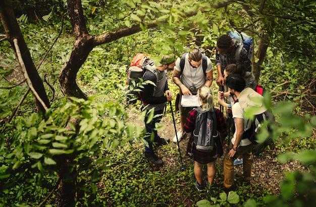 Треккинг вместе в лесу