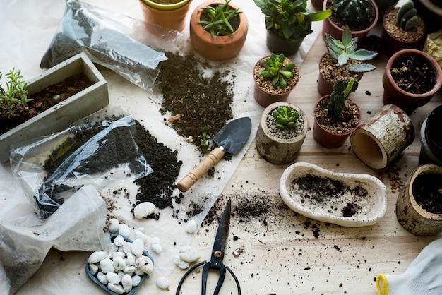 木製のテーブルの植え付け植物の土壌石