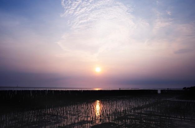 湖の美しい夕日