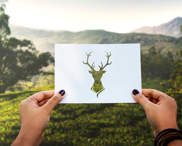 野生の生命動物の穿孔紙ムース