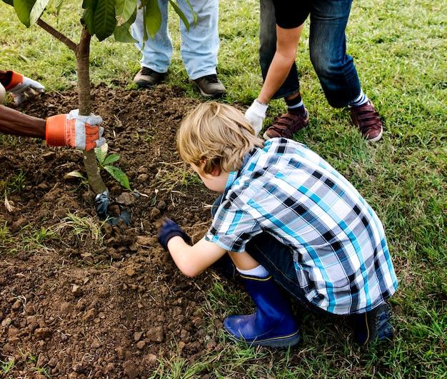 Группа людей сажают дерево вместе на открытом воздухе