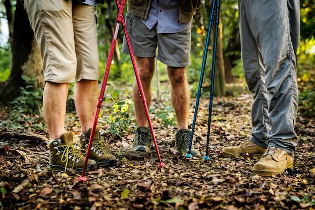 森をトレッキングする高齢者のグループ