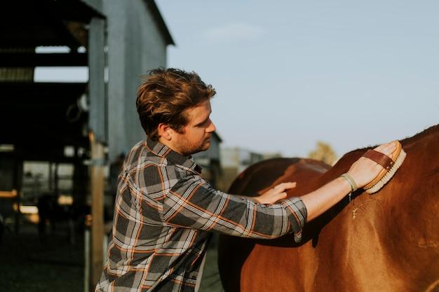 若い男が彼の馬を手入れ