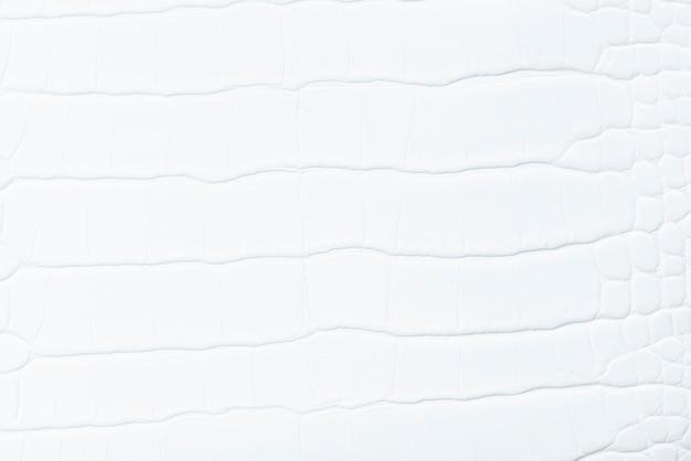 ホワイトレザーの背景
