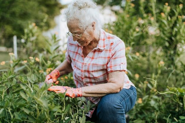 彼女の庭に傾向がある年配の女性