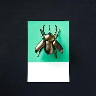 翼カブトムシ昆虫おもちゃオブジェクト