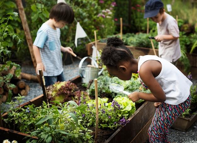 庭での経験とアイディアで遊ぶ