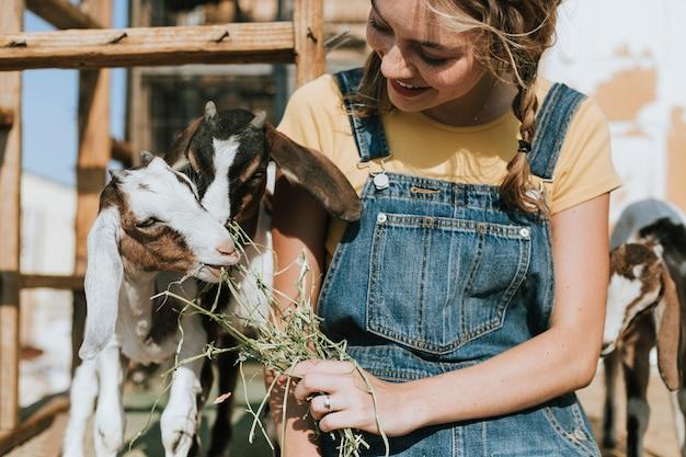 農家の少女、ヤギの餌やり