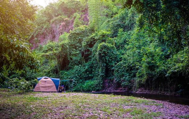 Кемпинг и палатка в природном парке