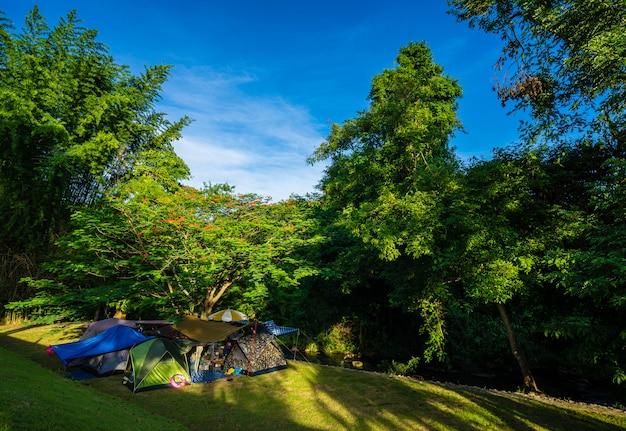 Кемпинг и палатка в природном парке с голубым небом