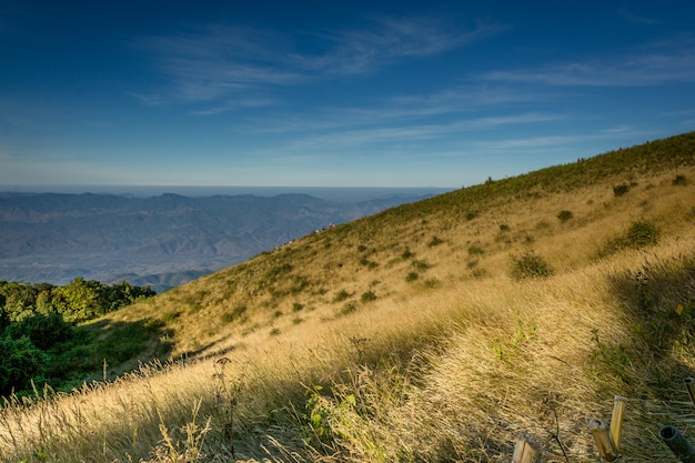 Природная тропа кью мэй пан в национальном парке дой интанон, чиангмай, таиланд